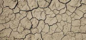 アトピー 乾燥